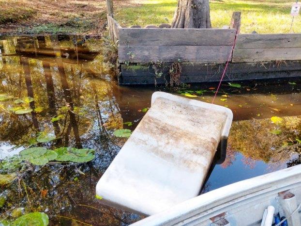 bin in blackwater river